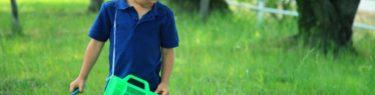 【男の子の虫嫌いを直す方法】小さな子どもの頃に克服させよう