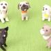 加計学園獣医学部2018年4月開設決定!積極的に支持すべき7つの理由